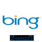 Bing removal tool
